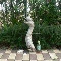 アートな流木(中)「恐竜」