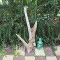 アートな流木(小)「立体」