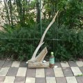 アートな流木(中)「角柱」
