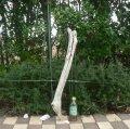 根っこ・幹の流木(小)「刻印」