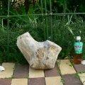 根っこ・幹の流木(小)「和楽」