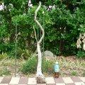 根っこ・幹の流木(中)「錆浅葱」