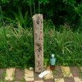 根っこ・幹の流木(中)「高秋」