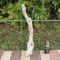 アートな流木(小)「織物」