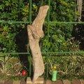 根っこ・幹の流木(大)「大根」