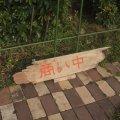 流木サイン、看板